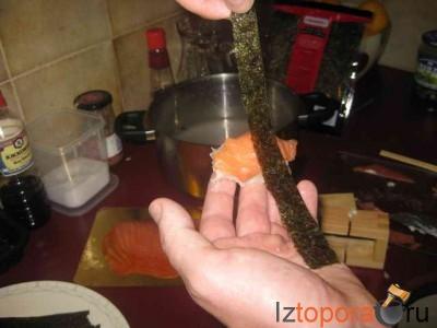 Простейшие суши